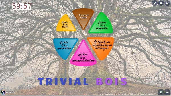 Trivial bois - Minuteur
