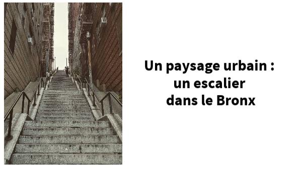 un escalier du Bronx
