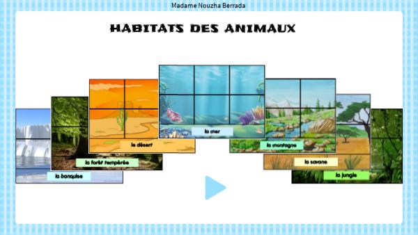 Habitats des animaux
