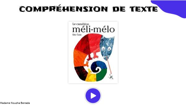 COMPRÉHENSION DE TEXTE - MÉLI-MÉLO LE CAMÉLÉON